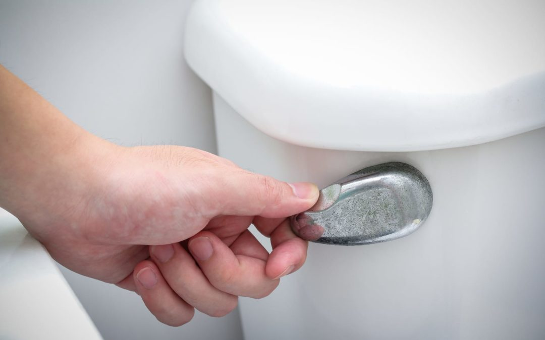 Fix a Loose Toilet Handle Yourself