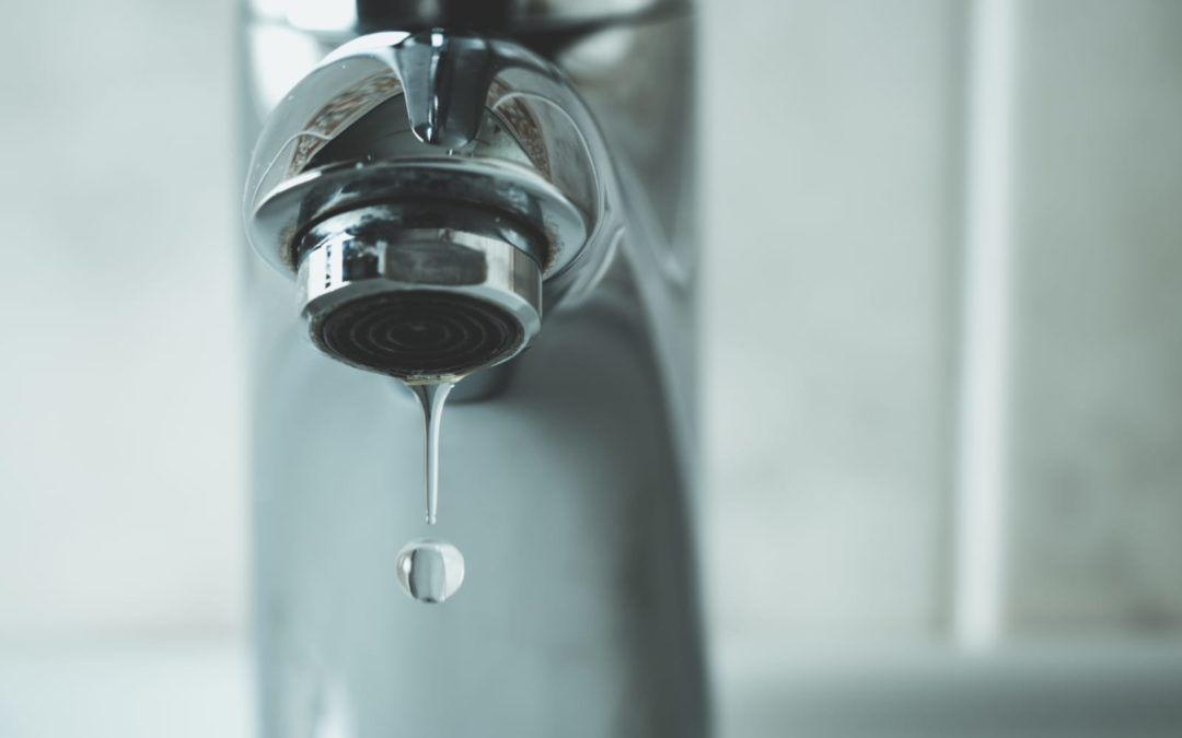 Easy Ways to Conserve Water Around the House