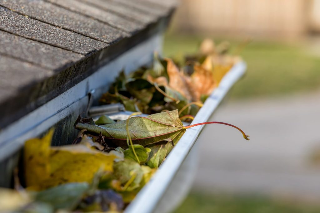 Cleaning guttersis vital to exterior water flow. A gutter rail clogged with dried leaves.